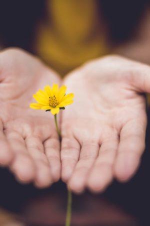 donna-tiene-piccolo-fiore-tra-le-mani